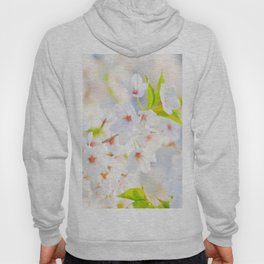 Beautiful White Blossoms In The Spring Sunlight Hoody