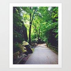 A Woodland Path Art Print
