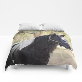 Stunning Gypsy Vanner in Color Comforters