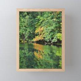 Evergreen Reflections- vertical Framed Mini Art Print