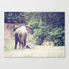 Contrariwise Canvas Print