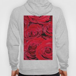 Bed of red roses - Photography pattern of red rose Hoody