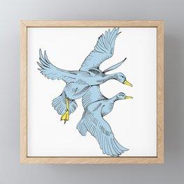 Two Grey Ducks Framed Mini Art Print