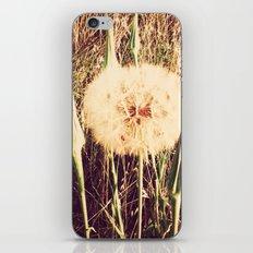 Wishful Thinking iPhone & iPod Skin