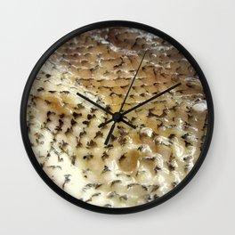 Fish Skin Wall Clock