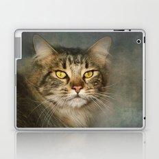Maine Coon Laptop & iPad Skin