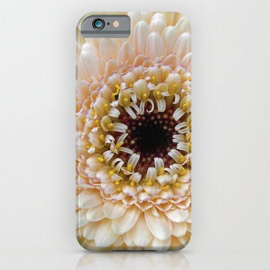 gerbera bloom IV iPhone & iPod Case