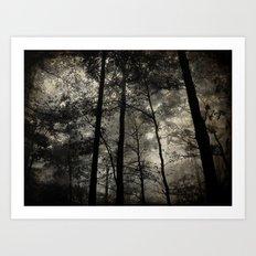 Foggy Nightfall Art Print