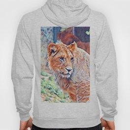 Aquarell Lion Hoody