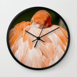 Miami Flamingo Sleeping Wall Clock