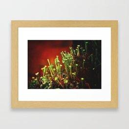 The Troubadours Framed Art Print