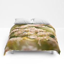 Aesculus chestnut tree blossoms Comforters