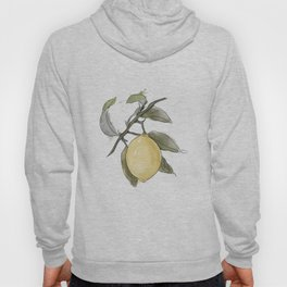 Original Lemon Watercolor Painting #Fruit Hoody