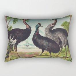 Vintage Illustration of Ostriches (1874) Rectangular Pillow