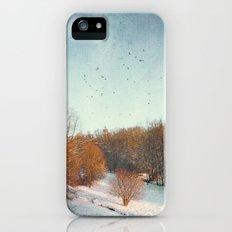 Trees in Winter II iPhone (5, 5s) Slim Case