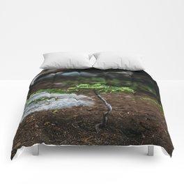 New Growth // California Comforters