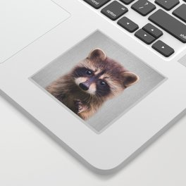 Raccoon - Colorful Sticker