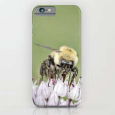 Busy Bee Slim Case iPhone 6s