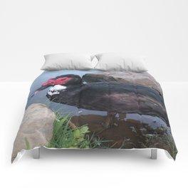 Muscovy Duck Comforters