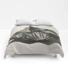 Water Chestnut Seed Comforters
