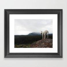 Bella On The Mountain Framed Art Print