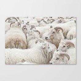 Stick Together Canvas Print