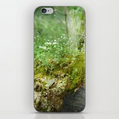 Where Miracles Are Born iPhone & iPod Skin