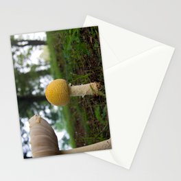 Wild Pennsylvania Mushrooms Stationery Cards