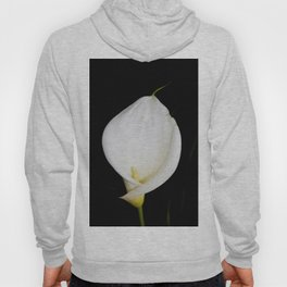 Calla Isolated Hoody