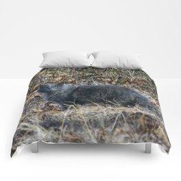Cat in the Woods Comforters
