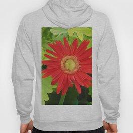 Stunning Red Flower Hoody