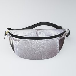 Nautical Garland Fanny Pack