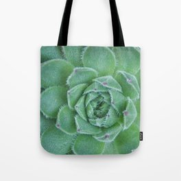 Sempervivum Succulent  Tote Bag