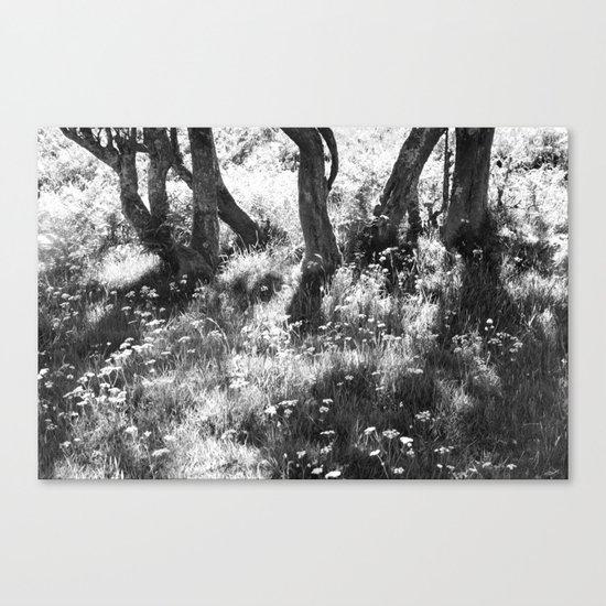 A memory Canvas Print