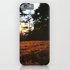 Fall's Last Light Slim Case iPhone 6s