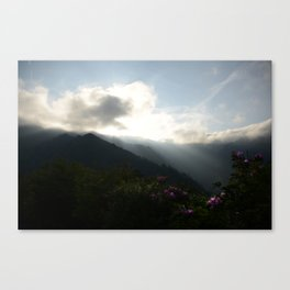 Flowers on the Mountainside  Canvas Print