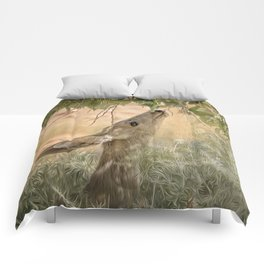 Within Reach Comforters