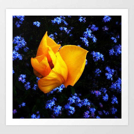 Flower Days Art Print