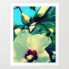 tiki flower with bud ~ flower photography Art Print