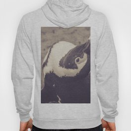 Adorable African Penguin Series 1 of 4 Hoody