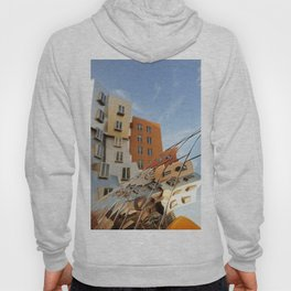 The Ray and Maria Stata Center Hoody