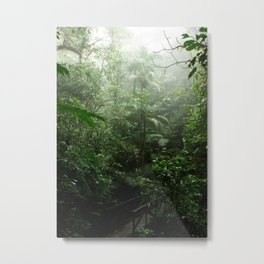Into the Cloud Forest Metal Print