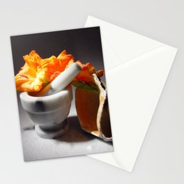 Mortar and Pestle, Flowers and Shell Stationery Cards