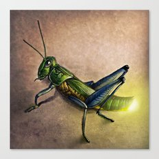 The Firefly and the Grasshopper Canvas Print