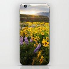 Oregon Wildflowers iPhone & iPod Skin