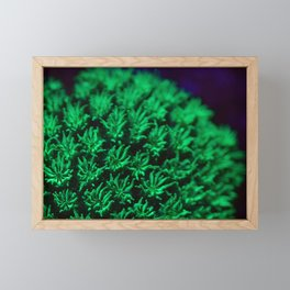 Fluorescent coral polyps reaching toward infinity Framed Mini Art Print