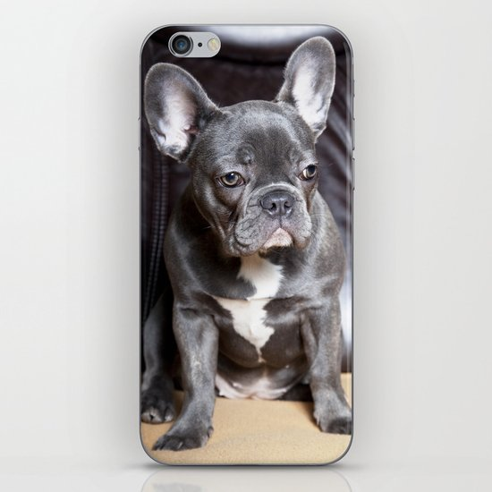 French Bulldog iPhone & iPod Skin