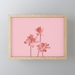 Three Lotos Flowers pink Design Framed Mini Art Print
