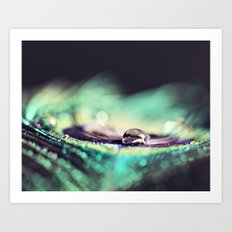 Water Drops II Art Print