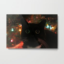 Bokeh Kitty Photo Metal Print